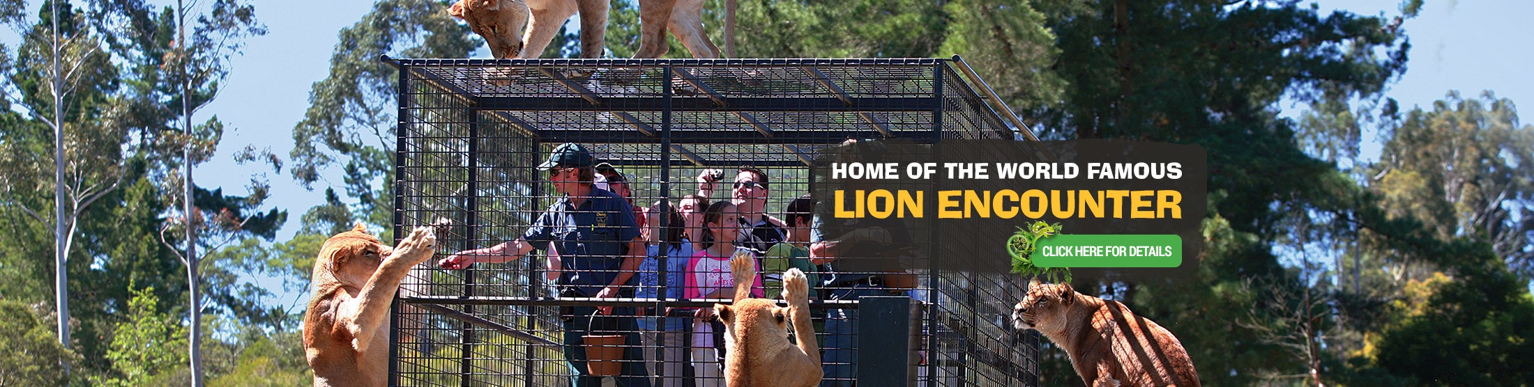 Home of the world famous lion encounter